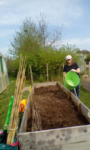 SALLY busy on the allotment