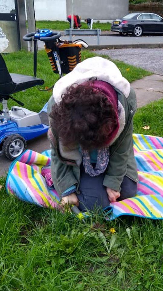 ceri planting daffs